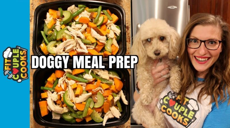 How to Meal Prep for DOGS